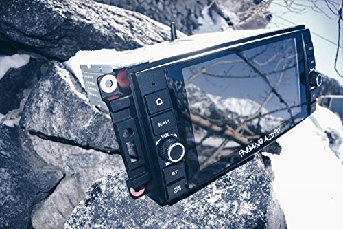 Insane Audio JK2001 Multimedia Receiver